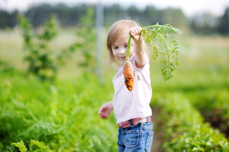 One way to let kids get a say is to grow their favorite vegetables.