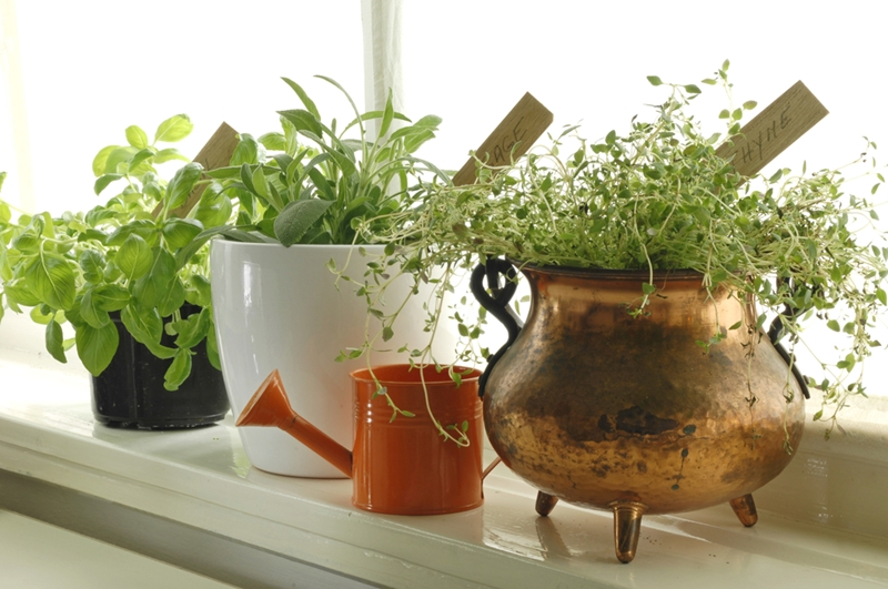 If you don't have room outside, you can still get kids into gardening with indoor planters.